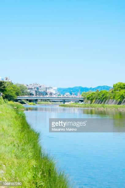 spring view of kamo river, kyoto city - 川岸 ストックフォトと画像