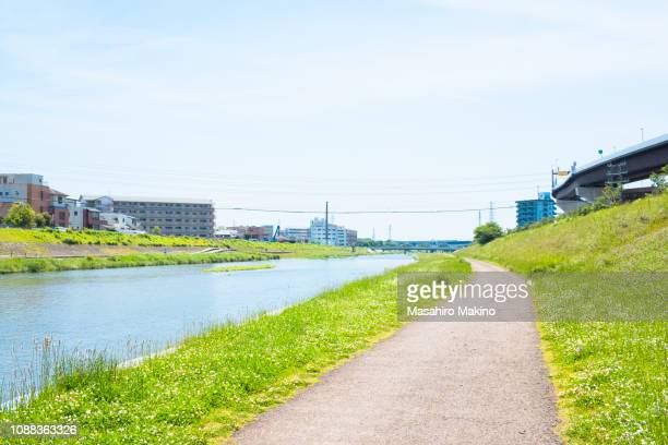 spring view of kamo river side, kyoto city - flussufer stock-fotos und bilder
