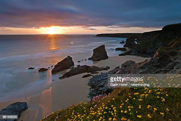 spring wildflowers on the clifftops overlooking bedruthan steps, north cornwall, england, united kingdom, europe - gavin hellier stock pictures, royalty-free photos & images