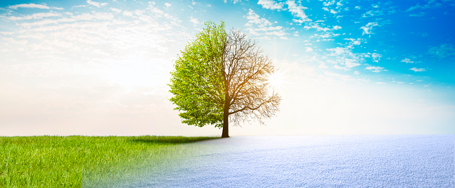 Spring winter change 1124646308
