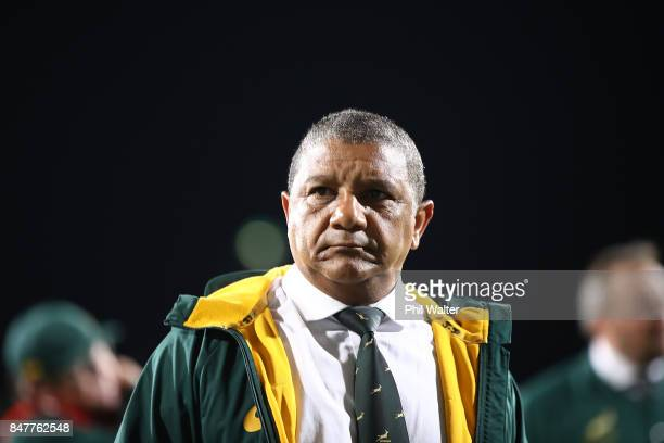 Springbok coach Alister Coetzee during the Rugby Championship match between the New Zealand All Blacks and the South African Springboks at QBE...