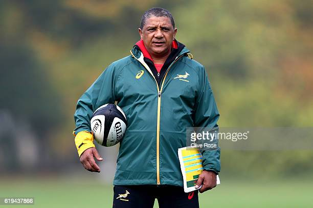 Springbok Coach Allister Coetzee looks on during a South Africa training session at the Lensbury Hotel on October 31 2016 in London England