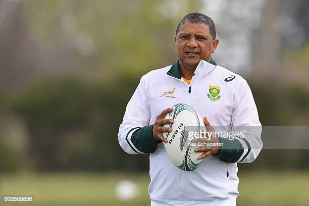 Springbok Head Coach Allister Coetzee looks on during a South Africa Springboks training session at Clearwater Resort Fields on September 13 2016 in...