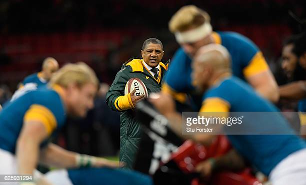 Springboks coach Allister Coetzee looks on before the International match between Wales and South Africa at Principality Stadium on November 26 2016...