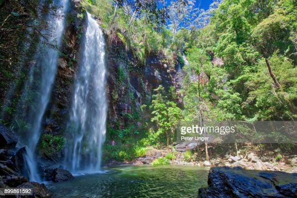 60 Top Springbrook National Park Pictures, Photos and Images