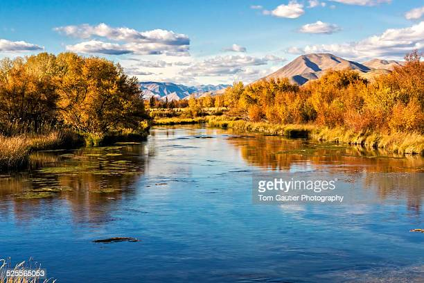 spring-fed silver creek in central idaho - sun valley idaho stock photos and pictures