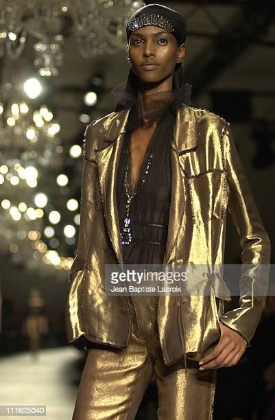 Spring-Summer 2003 during Paris Fashion Show Spring-Summer 2003 - Lanvin at Palais de Chaillot in Paris, France.