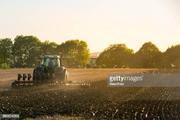 springtime and time for plowing soil - tractor stock pictures, royalty-free photos & images