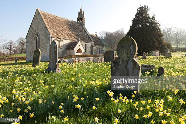 springtime at harescombe, gloucestershire - cemetery stock photos and pictures