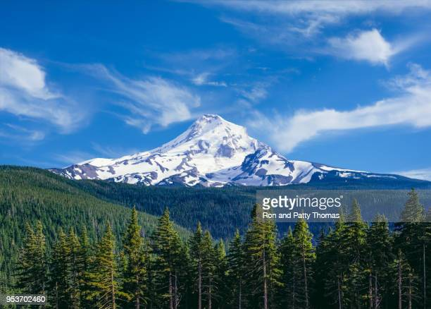 springtime at majestic mount hood in northern oregon - mt hood stock pictures, royalty-free photos & images