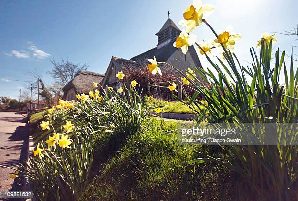springtime at st agnes thatched church, iow - s0ulsurfing stock pictures, royalty-free photos & images