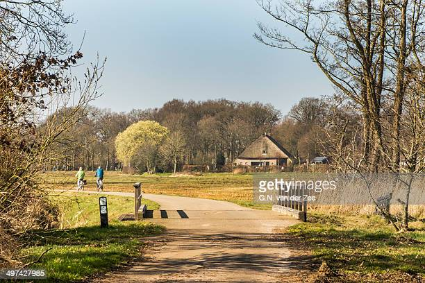 Springtime in Drenthe