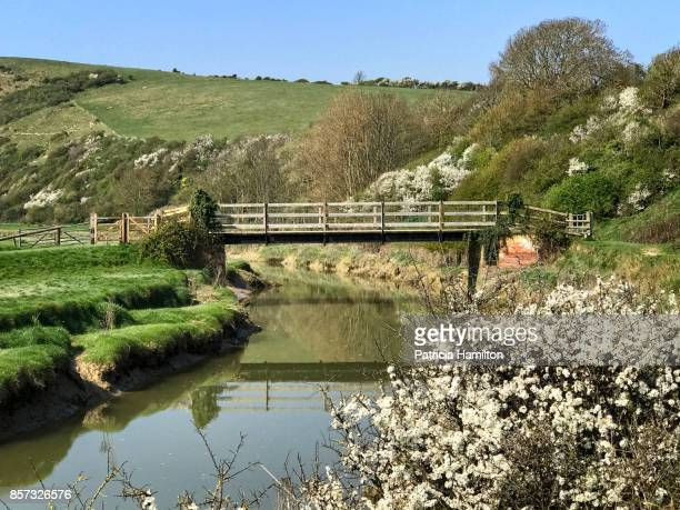 Springtime in East Sussex, Cuckmere River