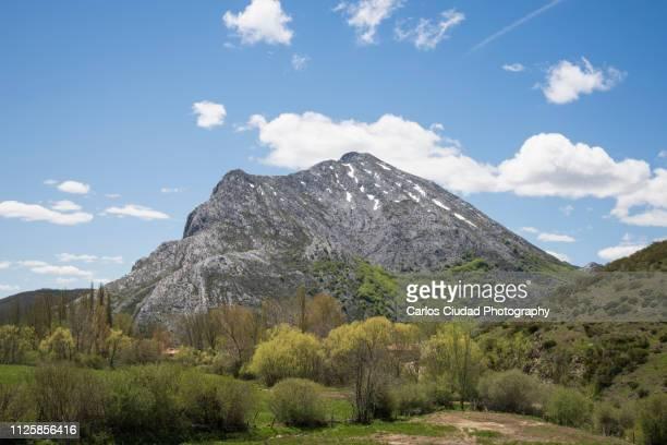 springtime in the cantabrian mountains, leon, spain - leon boden stock-fotos und bilder