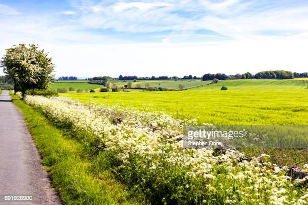 Springtime in the Cotswolds - The rolling wolds viewed from a lane near the Cotswold village of Turkdean, Gloucestershire UK