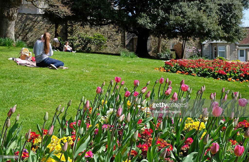 Couple picnicking near spring flowers pictures getty images springtime in truro cornwall england uk mightylinksfo