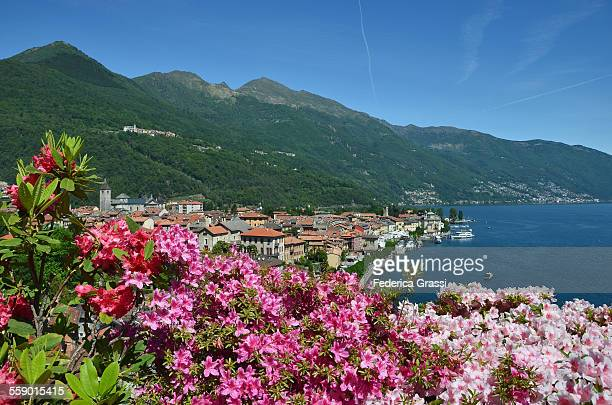Springtime Morning on Lake Maggiore, Italy