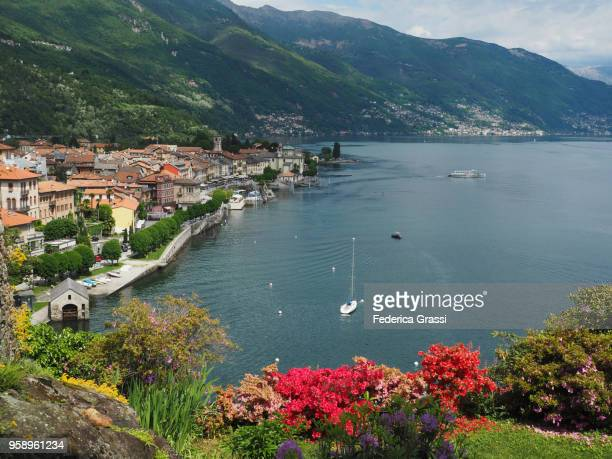 springtime on lake maggiore, northern italy - locarno stock photos and pictures