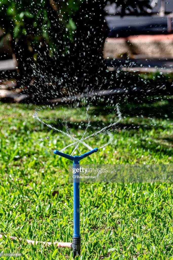 Sprinkler all over the lawn. : Foto de stock