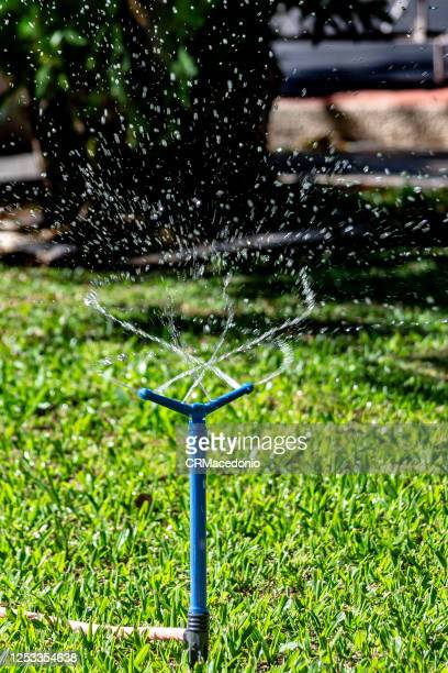 sprinkler all over the lawn. - crmacedonio stock pictures, royalty-free photos & images