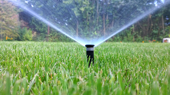 sprinkler of automatic watering - gettyimageskorea