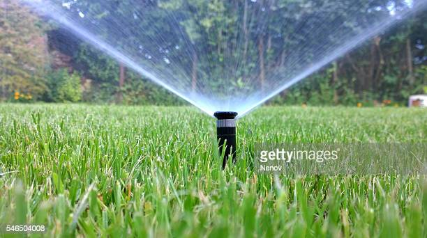 sprinkler of automatic watering - irrigation equipment stock pictures, royalty-free photos & images