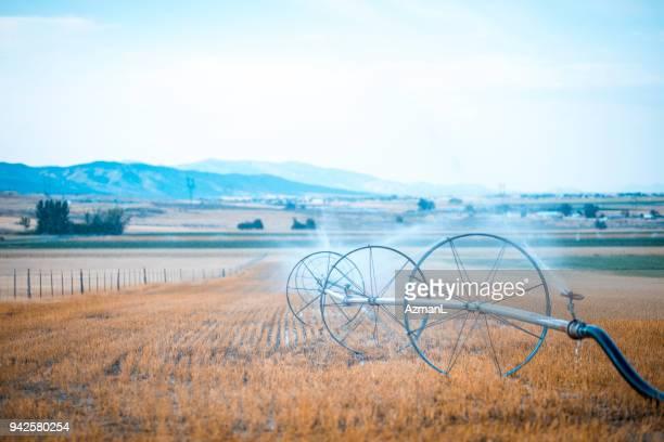 sprinkler on a filed - terra coltivata foto e immagini stock