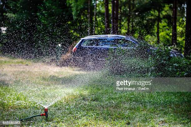 sprinkler on grassy field - piotr hnatiuk stock pictures, royalty-free photos & images