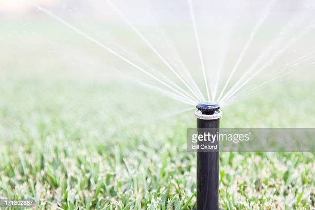 sprinkler - irrigation equipment stock pictures, royalty-free photos & images