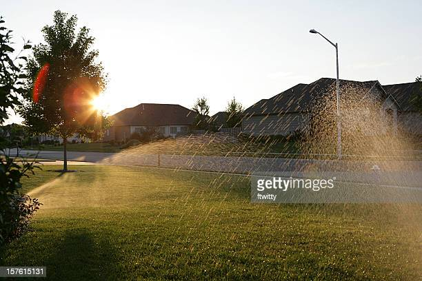 sprinkler system - sprinkler system stock pictures, royalty-free photos & images