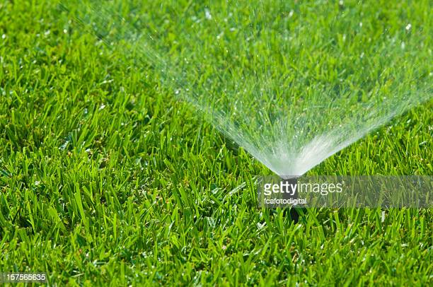 sprinkler system to water the grass - sprinkler system stock pictures, royalty-free photos & images