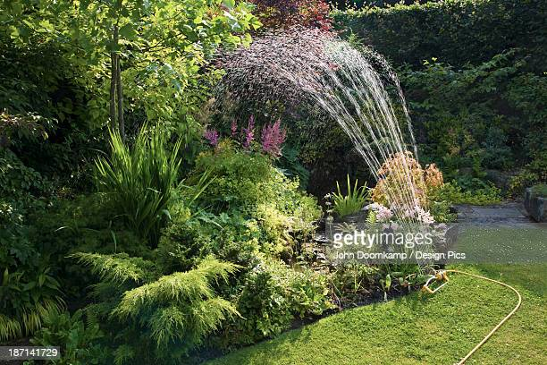 A Sprinkler Watering A Beautifully Landscaped Yard