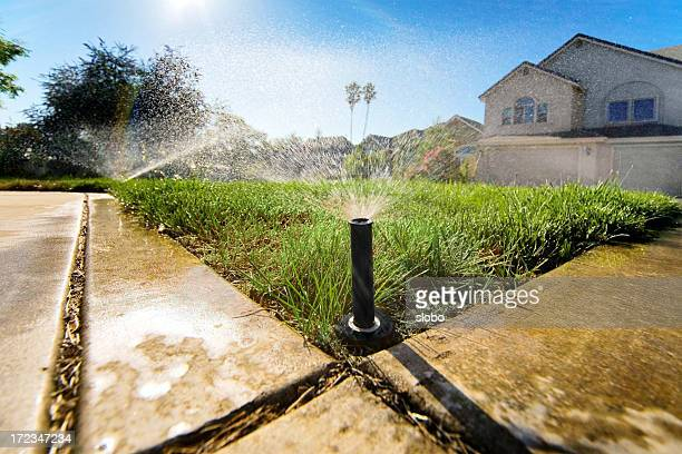 sprinklers low - irrigation equipment stock pictures, royalty-free photos & images