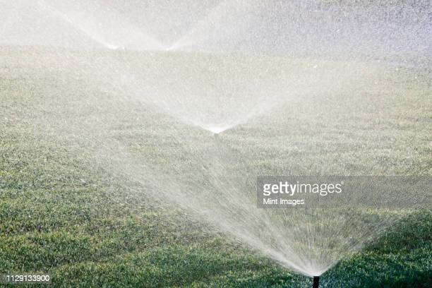 sprinklers on lawn - irrigation equipment stock pictures, royalty-free photos & images