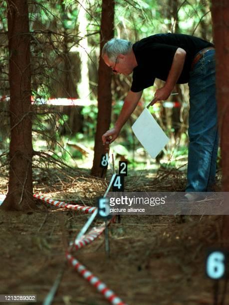 Spurensicherung an der Stelle wo die Leiche unter Reisig gefunden wurde Dreieinhalb Wochen nach seinem Verschwinden ist der kleine Maximilian...