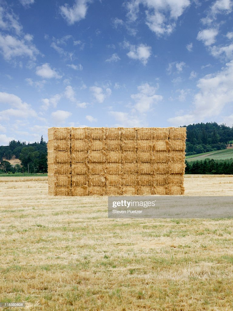 Square bale of hay : Stock Photo