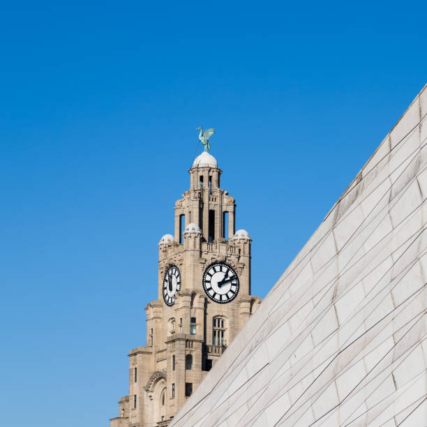 Square crop of the Liverbird
