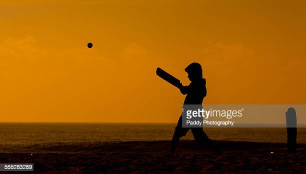 square cut - beach cricket stock pictures, royalty-free photos & images