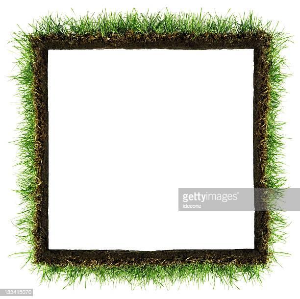 Square Grass Frame