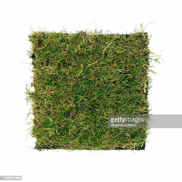 square grass turf - sode stock-fotos und bilder