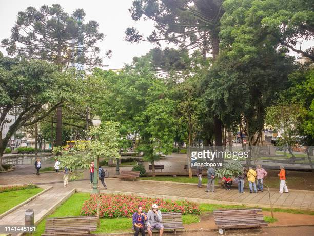 square in downtown curitiba-paraná - curitiba stock pictures, royalty-free photos & images