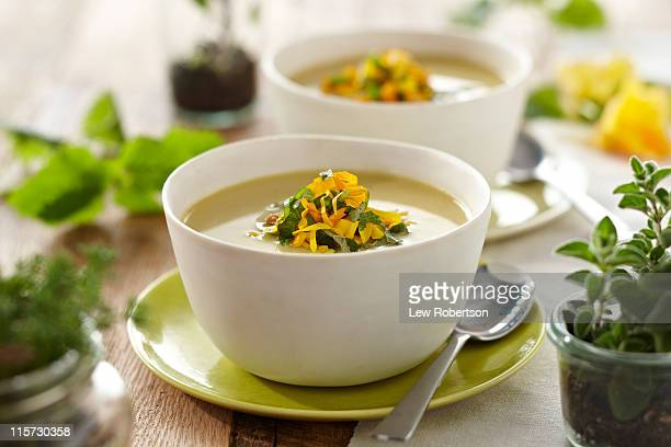 squash blossom soup - vegetable soup stock pictures, royalty-free photos & images
