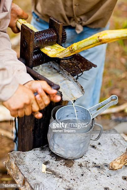 squeezing sugarcane juice in pan - merten snijders stockfoto's en -beelden