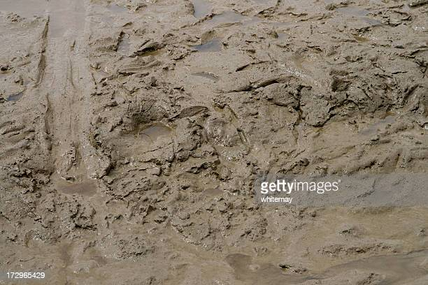 squelchy mud - mud stock pictures, royalty-free photos & images