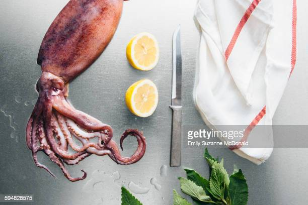 squid, lemon and herbs on metal tabletop - dish towel stock pictures, royalty-free photos & images