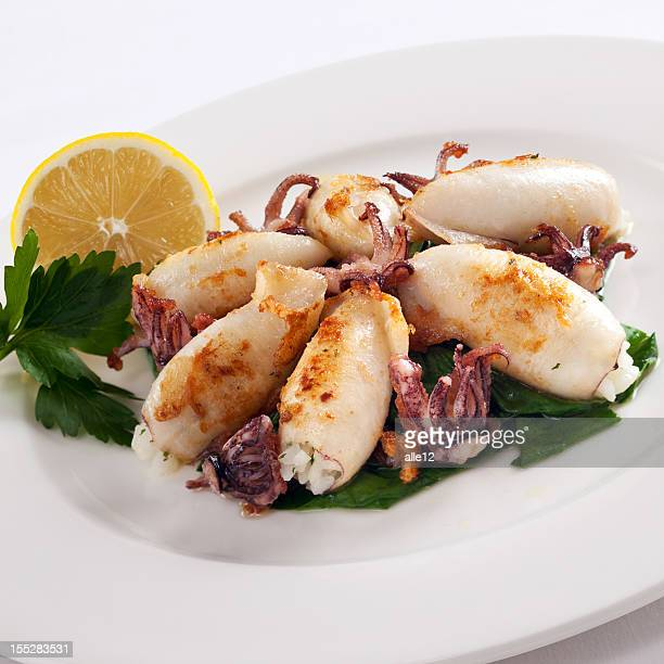 Squid Meal