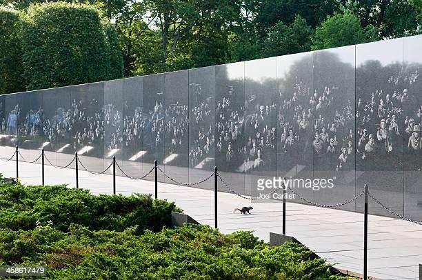 squirrel at the korean war memorial - korean war memorial stock pictures, royalty-free photos & images