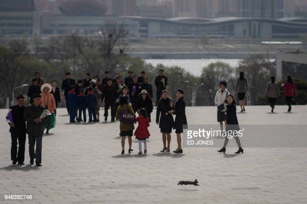 TOPSHOT A squirrel runs past people arriving at Mansu hill to pay their respects before the statues of late North Korean leaders Kim Il Sung and Kim...