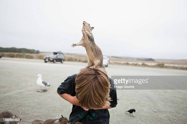 Squirrel standing on a boy's head