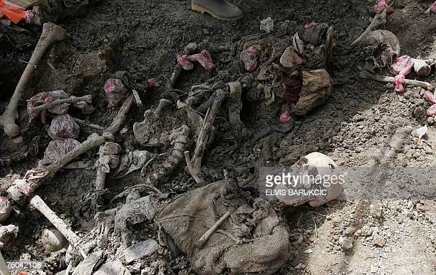 Picture taken 04 July 2007 shows bodies found in another mass grave site discovered in the village of Budak several hundreds of meters away from the...